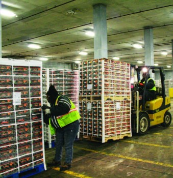 Pallets of clementines being stored in a warehouse at the Port of Wilmington, DE.