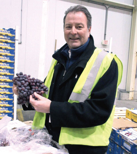 Mike Rodgers, director of East Coast operations for Giumarra Vineyards Corp., checks out a bunch of Chilean grapes on the docks of Delaware's Port of Wilmington.