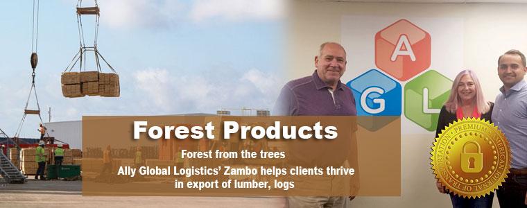 https://www.ajot.com/images/uploads/article/657-slide-forest.jpg
