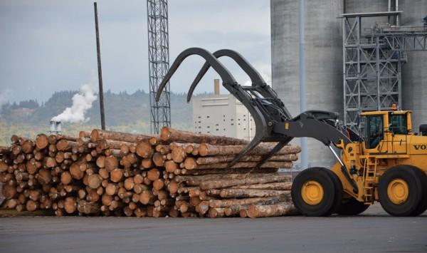 Log storage at the Port of Longview, WA