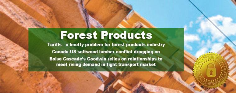 https://www.ajot.com/images/uploads/article/675-slide-forest.jpg