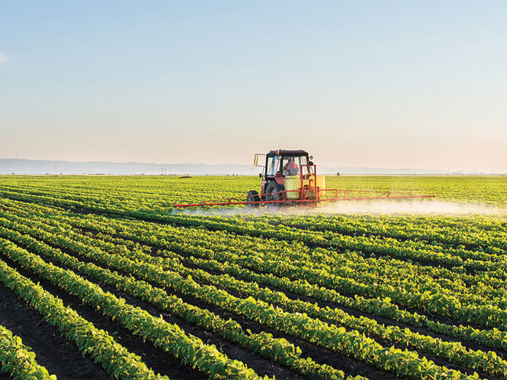 Brazilian soybean farmer tends to his crop