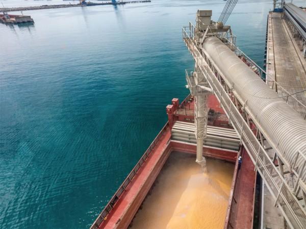 KSK Grain Terminal loading grain