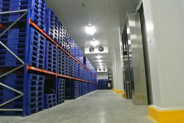 GAC Samudera Logistics operates Indonesia's first CO2 cold