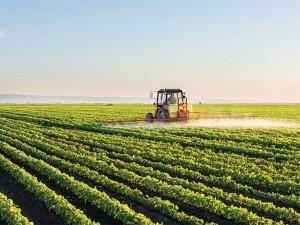 https://www.ajot.com/images/uploads/article/676-brazil-soybean-farmers.jpg