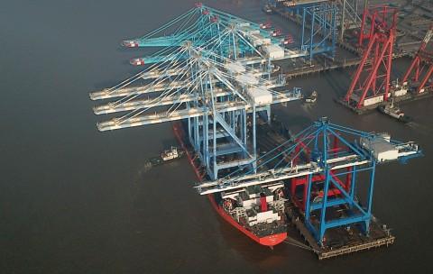 https://www.ajot.com/images/uploads/article/nwsa-cranes-03042019.jpg