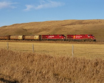 CP Grain train on the Prairies