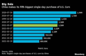 China extends historic corn-buying spree with US purchase