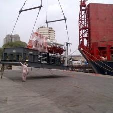 Aaras handled 48000 tons of Heavy Cargo in Karachi Port
