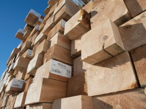 Increased demand for softwood lumber in the US and Asia will change the global trade flows of wood in the coming decade
