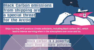 Arctic Council misses chance to address black carbon emissions from shipping
