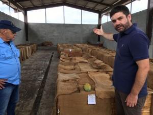 Ecuador's niche cacao business looks to expand