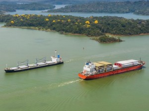 ECLAC outlines impacts of Covid pandemic on Latin American ocean shipping
