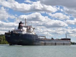 Seaway heading for total cargo decline despite grain surge