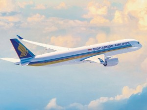 Singapore Airlines awards Brussels Airport cargo handling contract to WFS