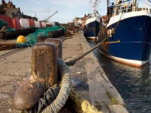 UK fishing industry forced to adapt to post-Brexit paradigm