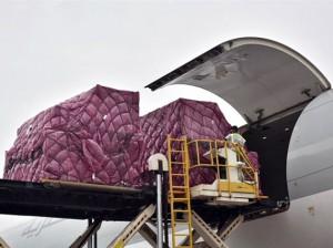 Qatar Airways Cargo charters life saving medications to Brasilia
