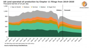 Bankruptcy-hit US operators set to lose a quarter of oil production in 2021, offsetting nationwide growth