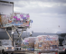 1,500 Tonnes of Roses on Board Lufthansa Cargo flying 40 million roses for Valentine's Day