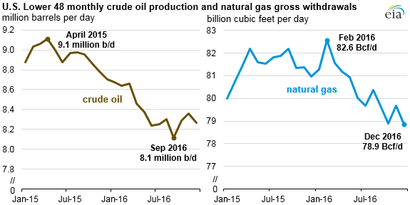 U S  crude oil and natural gas production both fell in 2016