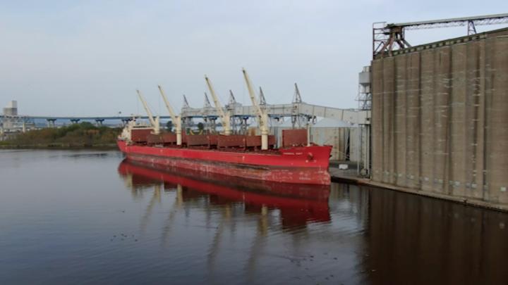 Fednav FEDERAL DART loading agriculture cargo in Duluth, Minnesota.