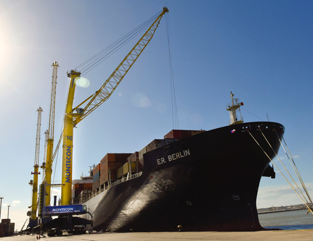 Both LHM 800 are busy handling container in the Port of Montevideo