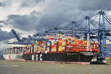 The OOCL Hong Kong and MSC Ditte, the 97th and 98th mega vessels to call at Felixstowe this year. The 100th, the Metz Maersk, is due on Thursday